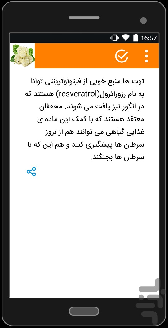 توت screenshot