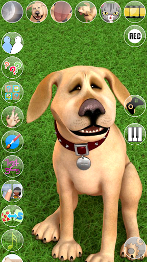 Talking John Dog: Funny Dog screenshot